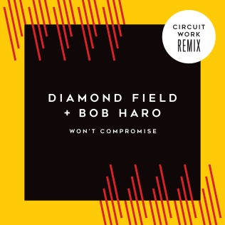 Won't Compromise Maxi-Single Cover Circuit Work