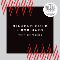 Won't Compromise Maxi-Single Cover Full