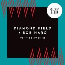 Won't Compromise Maxi-Single Cover Le Flex